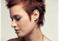 best pixie haircuts for round faces short and curly Short Spiky Haircuts For Round Faces Choices