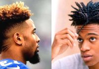 Cozy 30 best curly hairstyles for black men african american Haircuts For African American Curly Hair